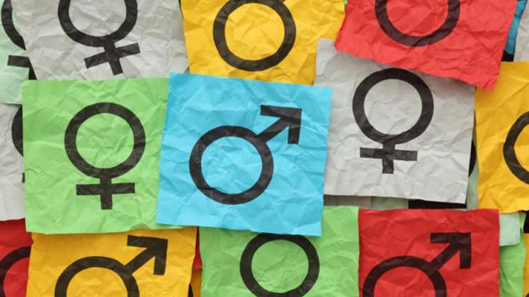 Тренінг «Гендерно чуйна журналістика»